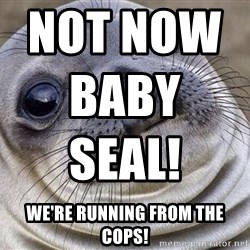 Awkward Moment Seal - Not now baby seal!                                                we're running from the cops!