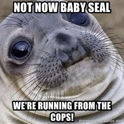 Awkward Moment Seal - Not now baby seal we're running from the cops!