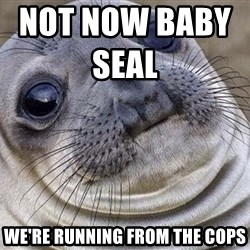 Awkward Moment Seal - not now baby seal                   we're running from the cops