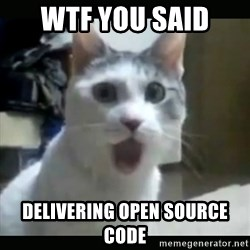 Surprised Cat - WTF you said  DELIVERING OPEN SOURCE CODE