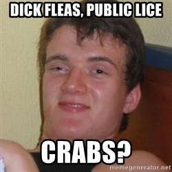Really highguy - DICK Fleas, Public LICe CRABS?