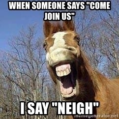 """Horse - When someone says """"come Join Us"""" I say """"Neigh"""""""