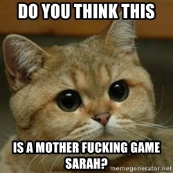 Do you think this is a motherfucking game? - do you think this  is a mother fucking game Sarah?