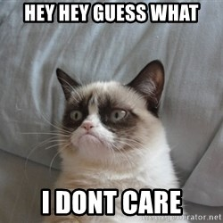 Grumpy cat good - Hey Hey Guess what I dont care