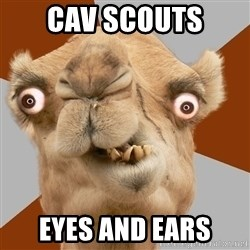 Crazy Camel lol - Cav scouts Eyes and ears