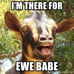 Illogical Goat - I'm there for ewe babe