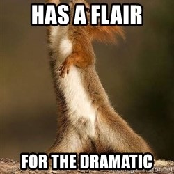 dramatic squirrel - has a flair for the dramatic