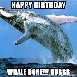 whaleeee - Happy birthday whale done!!! HURRR