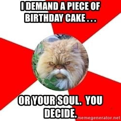 Diabetic Cat - I demand a piece of birthday cake . . . or your soul.  You decide.