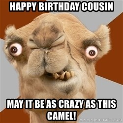 Crazy Camel lol - Happy bIRthday cousin May it be as crazy as this camel!