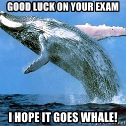 whaleeee - GOOD luck on your exam i hope it goes whale!