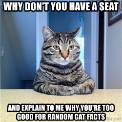 Chris Hansen Cat - Why don't you have a seat And explain to me WHY you're too good for random CAT facts
