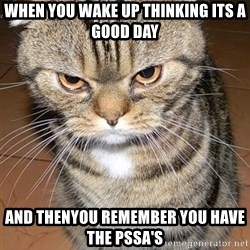 angry cat 2 - When you wake up thinking its a good day And thenyou remember you have the pSsa's