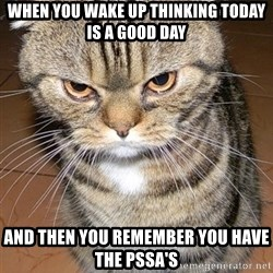 angry cat 2 - When you wakE up thinking today is a good daY And then you remember you have the pssa's