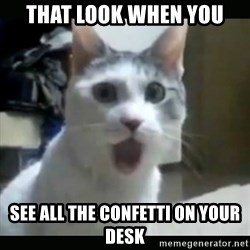 Surprised Cat - tHAT LOOK WHEN YOU SEE ALL THE CONFETTI ON YOUR DESK