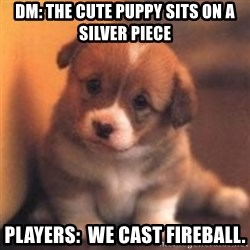cute puppy - DM: The cute puppy sits on a silver piece Players:  We cast fireball.
