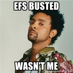 Shaggy. It wasn't me - EFS busted wasn't me