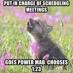 Baby Insanity Wolf - Put in charge of scheduling meetings Goes power mad. Chooses 1:23