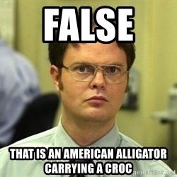 False guy - FALSE   THAT IS AN american alligator carrying a croc
