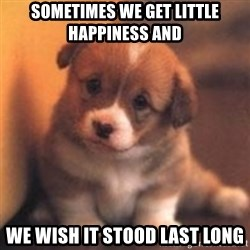 cute puppy - Sometimes we get little happiness and we wish it stood last long