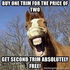 Horse - Buy one trim for the price of two get second trim absolutely free!