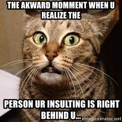 Serious Cat - the akward momment when u realize the  person ur insulting is right behind u...