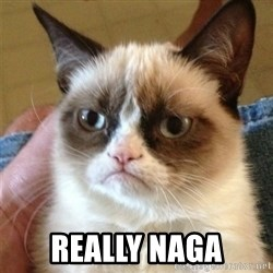 Grumpy Cat  -  Really naga