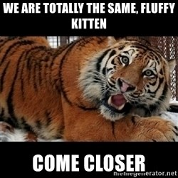 Sarcasm Tiger - We are totally the same, fluffy kitten come closer