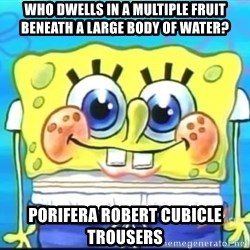 Epic Spongebob Face - who dwells in a multiple fruit beneath a large body of water? porifera robert cubicle trousers