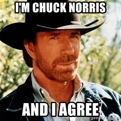 Brutal Chuck Norris - i'm chuck norris and I agree