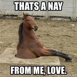 Hole Horse - thats a nay from me, love.