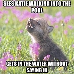 Baby Insanity Wolf - Sees katie walking into the pool gets in the water without saying hi