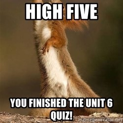 dramatic squirrel - HIGH FIVE You finished the unit 6 quiz!