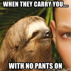 Whispering sloth - When they carry you.... with no pants on