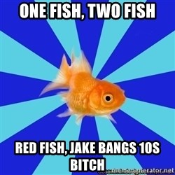 Absentminded Goldfish - One fish, two fish red fish, jaKe bangs 10s bItCh