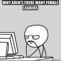 computer guy - Why aren't there MANY FEMALE LEADERS
