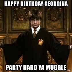 Harry Potter Come At Me Bro - Happy birthday Georgina Party hard ya muggle