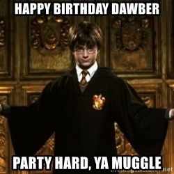 Harry Potter Come At Me Bro - HaPPY BIRTHDAY DAWBER PARTY HARD, YA MUGGLE