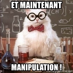 Chemistry Cat - et maintenant manipulation !