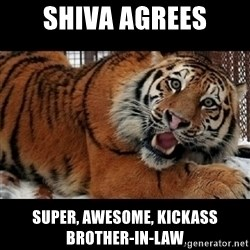 Sarcasm Tiger - Shiva agrees Super, awesome, kickass brother-in-law