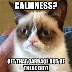 Grumpy Cat  - calmness? Get that garbage out of there boy!