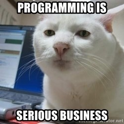 Serious Cat - programming is serious business