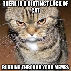 angry cat 2 - there is a distinct lack of cat running through your memes