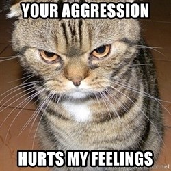 angry cat 2 - Your aggression  hurts my feelings