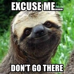 Sarcastic Sloth - Excuse me....  don't go there