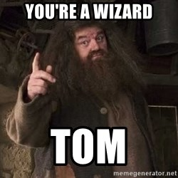 Hagrid - You're a wizard Tom