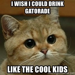 Do you think this is a motherfucking game? - I wish I could DRINK GATORADE  Like the cool kids