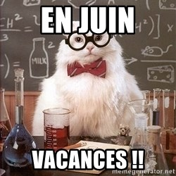 Science Cat - EN JUIN VACANCES !!