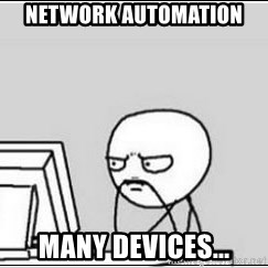 computer guy - Network automation many devices...