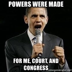 Expressive Obama - Powers were made  for Me, Court, and Congress